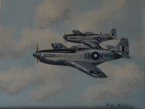 Mustang Duo by Murray McLeod