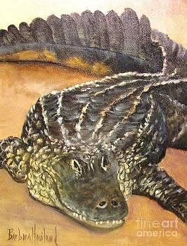 My Alligator by Barbara Haviland