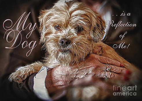 My Dog Is A Reflection Of Me by Kathy Tarochione
