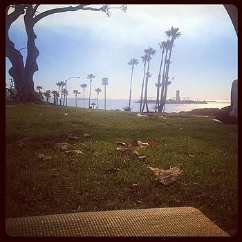 My Favorite Yoga Spot #beachyoga by Lacie Vasquez