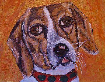 My Friend's Beagle by Cindy Lawson-Kester