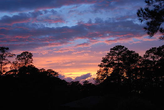 My Front Porch View by Max Mullins