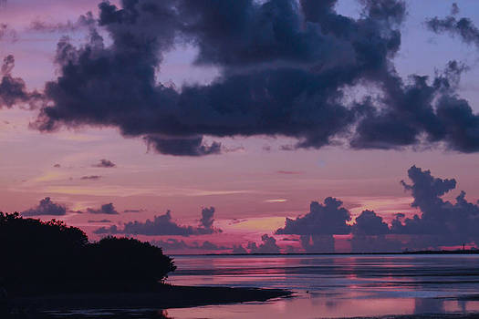 My Heart is Clouding the Matter Tarpon Springs Florida Sunset by Robin Lewis
