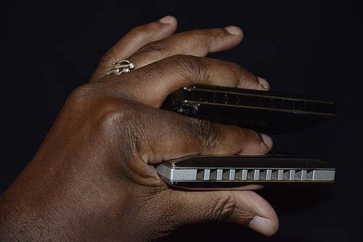 Teo SITCHET-KANDA - My Afro Blues Harmonica - Double Play Blues