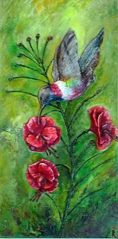 My hummingbird  by Raya Finkelson
