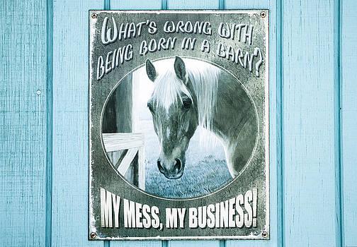 Ramunas Bruzas - My Mess My Business