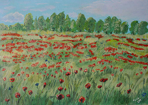 My poppies field by Felicia Tica