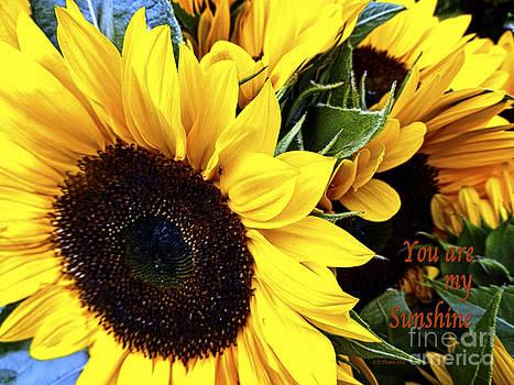 Dee Flouton - My Sunshine