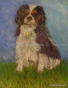 My Tri-Colored Cavalier by Calliope Thomas