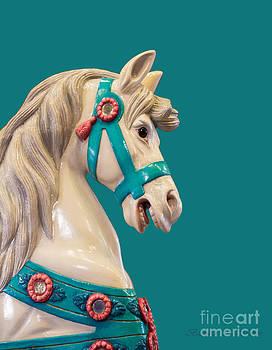Barbara McMahon - My Turquoise Pony