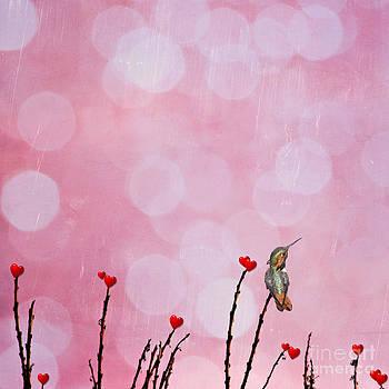 Susan Gary - My Valentine