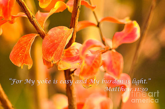 My Yoke is Easy by Reflections by Brynne Photography