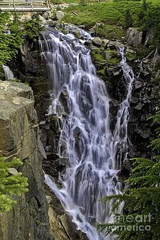 Tim Moore - Myrtle Falls