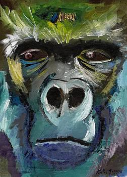 Mysterious Gorilla  by Katie Sasser