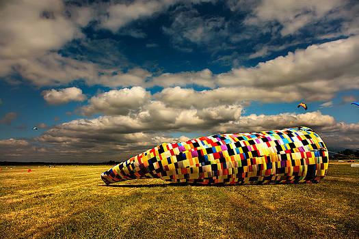 Mysterious Kite by Franco Farina