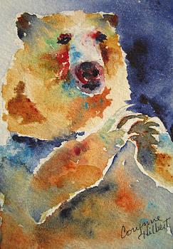 Mystical Bear by Corynne Hilbert