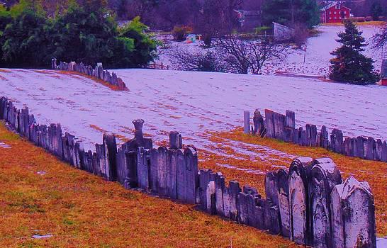 Mystical Graveyard by Sharon Costa