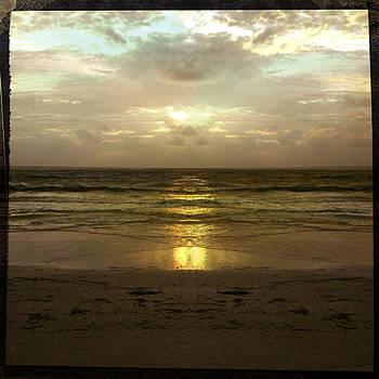 Mystical Siesta II by Alison Maddex