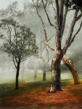 Maria Holmes - Mystical Trees