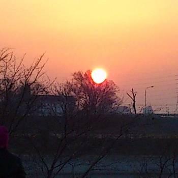 Morning sun by Yoshikazu Yamaguchi