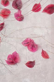 Nagiko Leaves and Petals by Antonia and Fabio Duealberi