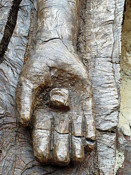Nail Scarred Hand by Lisa Jones