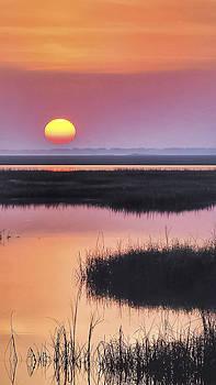 Namaste Sunrise Sunset Image Art by Jo Ann Tomaselli