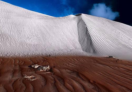 Nambung Desert Floor by Julian Cook