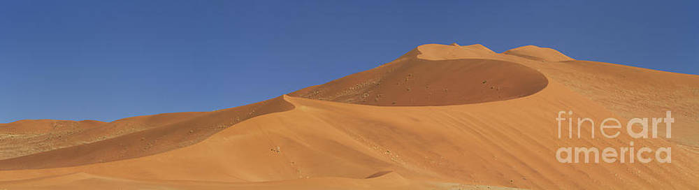 Namibian Desert by Richard Garvey-Williams