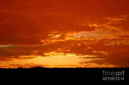 Namibian Sunset by Alison Kennedy-Benson