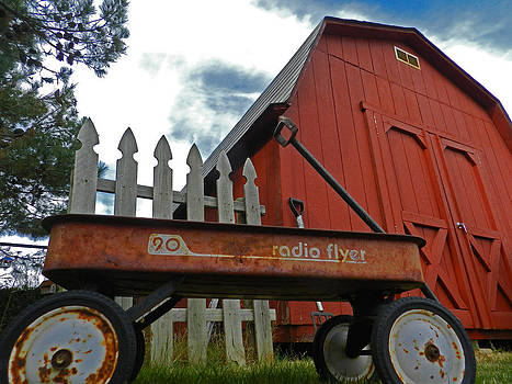 Nana's Backyard Barn by Mamie Thornbrue