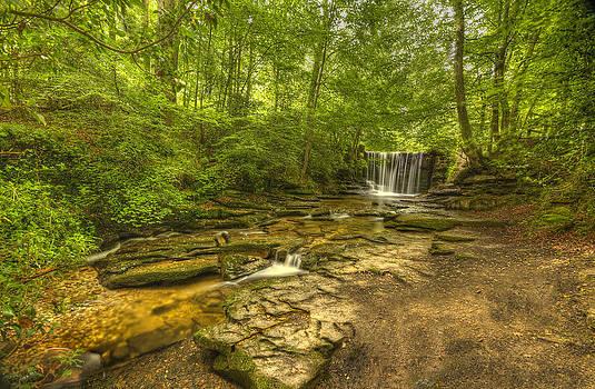 Nant Mill  by Darren Wilkes