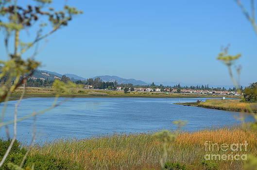 Napa River Day by Greg Cross