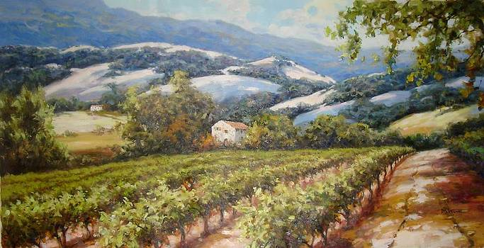 Napa Valley Oaks and Vines by David Kim