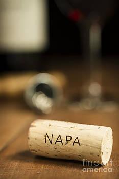 Napa Wine Cork Vertical by Brycia James