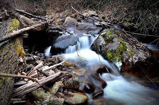 Guy Hoffman - Naramata Creek