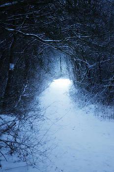 Narnia by Studio Yuki