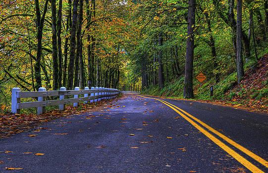 Paul Harrett - Narrow Road