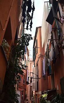 Narrow Street in Vernazza by Dany Lison