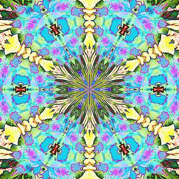 Valerie Kirkwood - Nasturtium Abstract Kaleidoscope