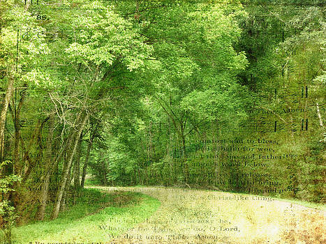 Terry Eve Tanner - Natchez Trace
