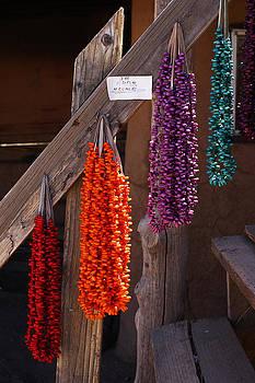 Native Corn by Katelyn Bird