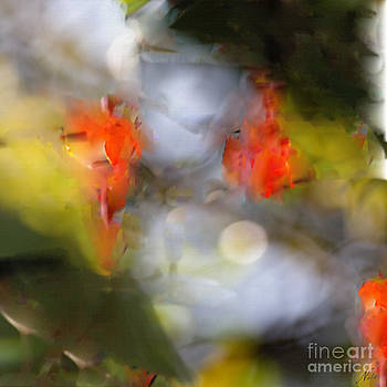 Natural Abstractions #8 Pomegranate Flowers by Nola Lee Kelsey
