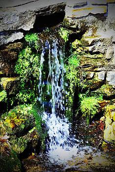 Natural Flow by Melissa Jones