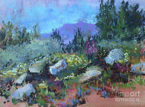 Natural Rock Garden by Rosemary Juskevich