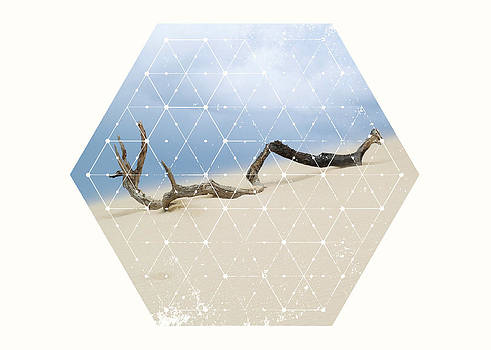 Nature and Geometry by Denis Marsili