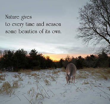 Nature Gives. by Kelly Nelson