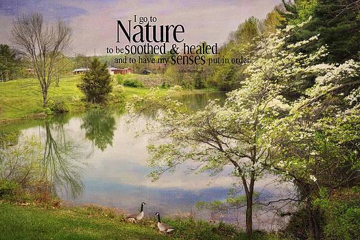 Nature by Kathy Jennings