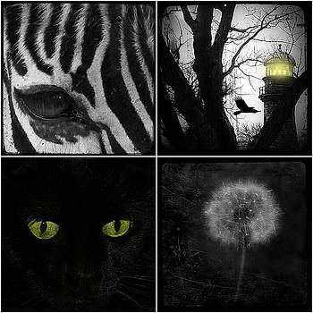 Gothicrow Images - Nature Squares - Collage