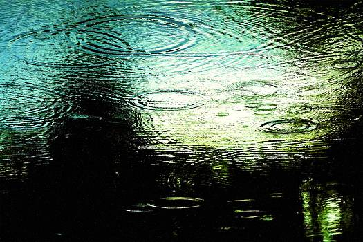 Rosemarie E Seppala - Natures Abstract Of Evening Reflections